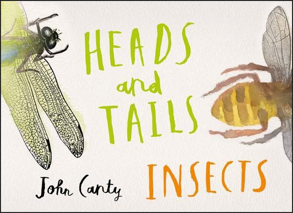 Heads & Tails: Insects