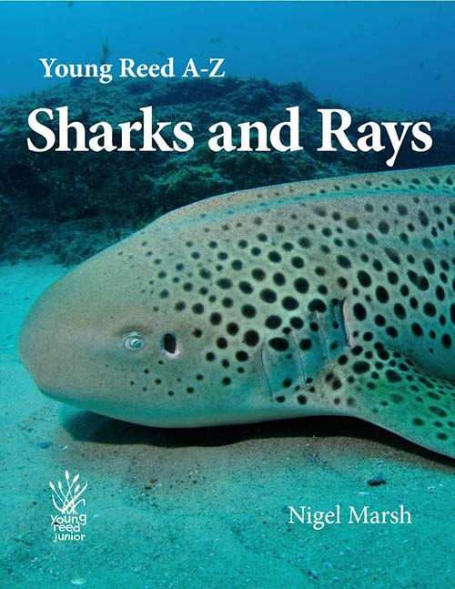 A-Z Sharks and Rays